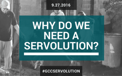 Why do we need a Servolution?